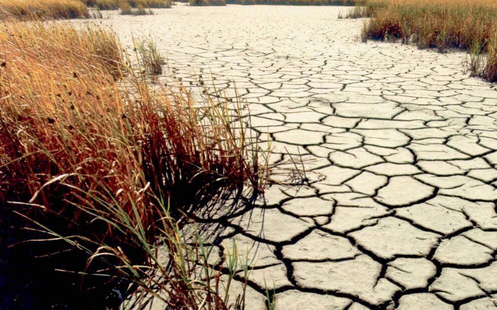 Dérèglements climatiques - Page 2 Drought-Flickr-1024x640